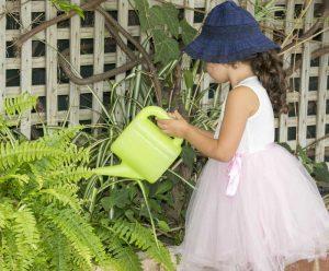 Eastern suburbs Sydney Montessori