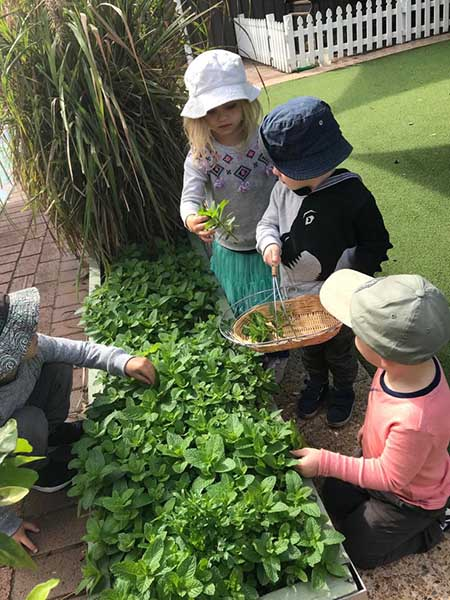 Montessori children gardening